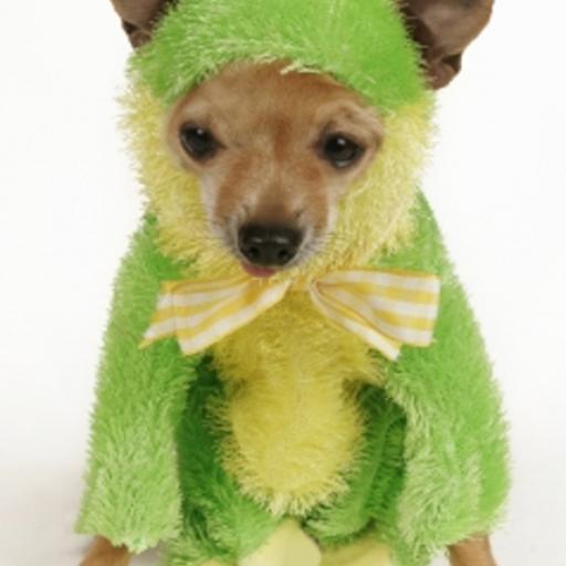 Frog Dog Slide Puzzle