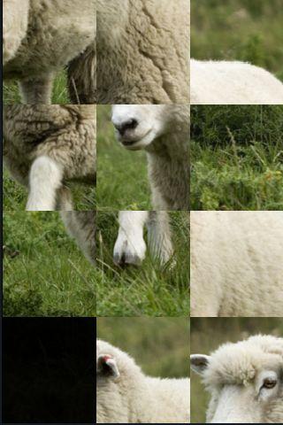 SlidePuzzle - Sheep screenshot #1