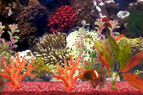 My Aquarium screenshot 4
