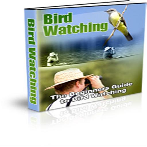 The Beginner's Guide to Bird Watching