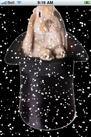 Magic Rabbit Snow Globe screenshot #2