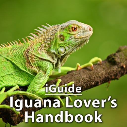 iGuides - Iguana Lover`s Handbook