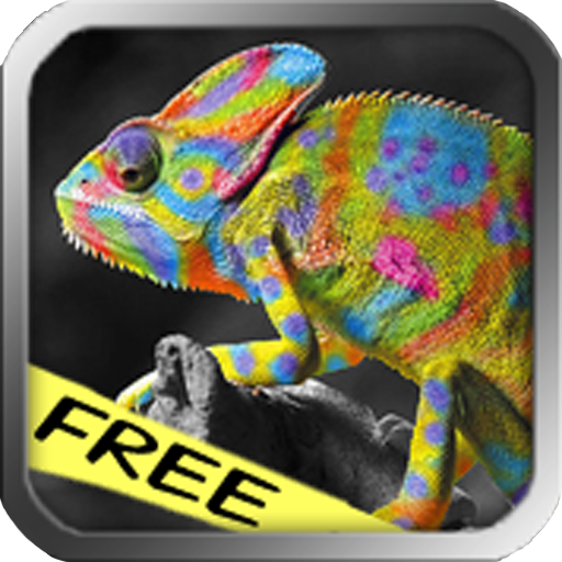 Color Magic HD Free