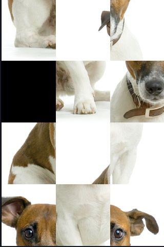 SlidePuzzle - Jack Russel Terrier screenshot #1