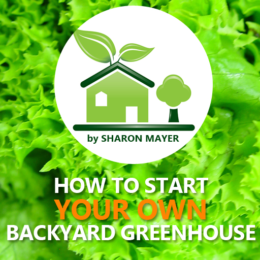 How to Start Your Own Backyard Greenhouse
