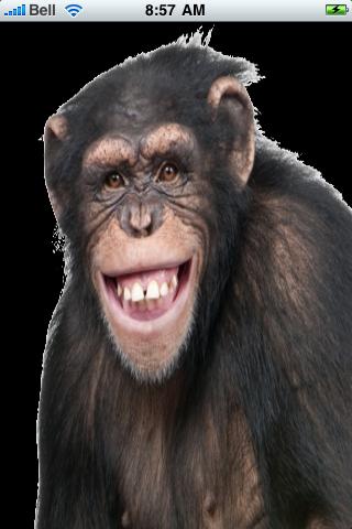 Happy Chimpanzee Snow Globe screenshot #1