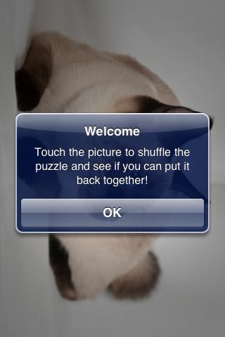 Siamese Cat Slide Puzzle screenshot #3