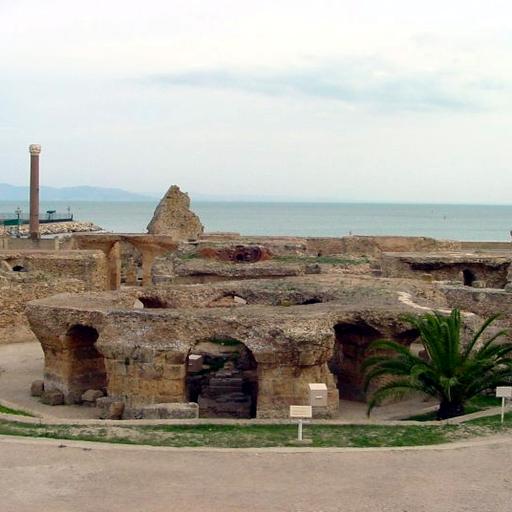 Carthaginian Empire Study Guide