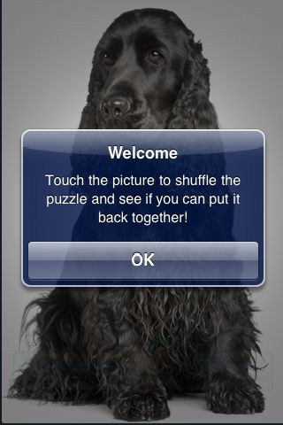 SlidePuzzle - Cocker Spaniel screenshot #2