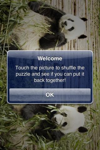 Giant Pandas Slide Puzzle screenshot #3