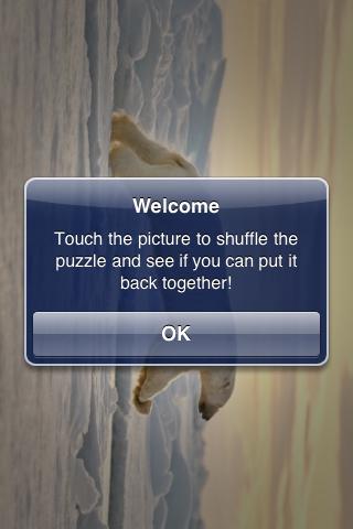 Polar Bear Leaping Slide Puzzle screenshot #2