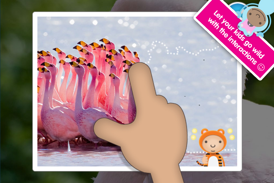ABC Wildlife! - words about animals with pictures, sounds and videos for kids screenshot 3
