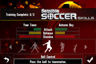 Sensible Soccer Skills screenshot 3