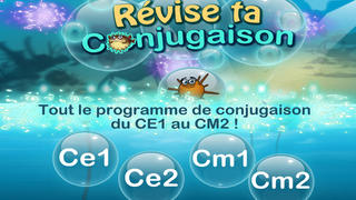 Révise ta conjugaison screenshot 1