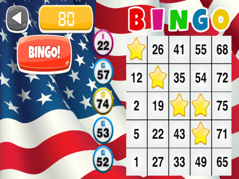 All-American Bingo Game: Fun Party in the USA Edition - FREE screenshot 7