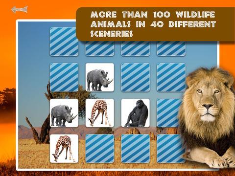 Memo Game Wild Animals Photo screenshot 10