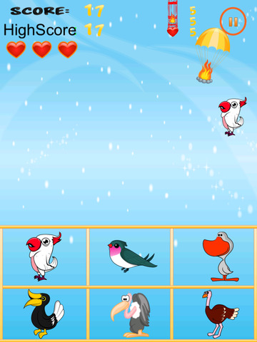 American Bird Match Free Game screenshot 6