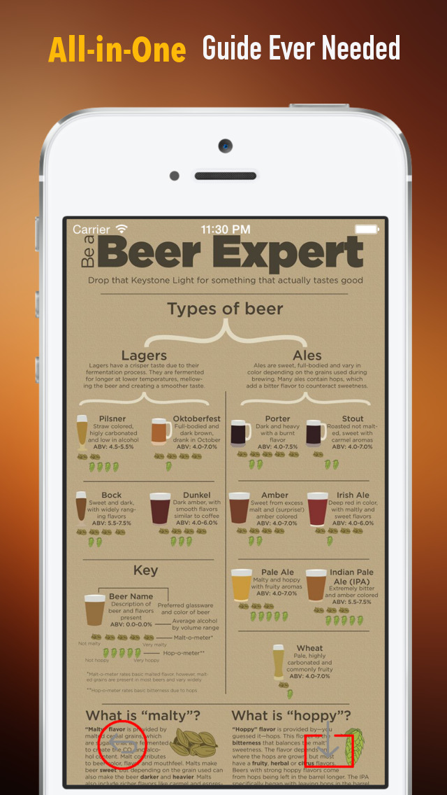 Beer 101: Quick Study Reference with Video Lessons and Tasting Guide screenshot 2