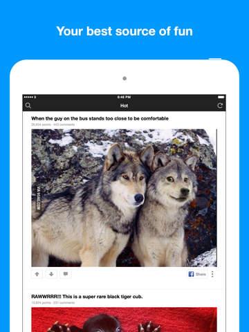 9GAG: Best LOL Pics & GIFs screenshot 6