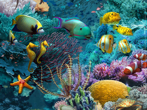 Amazing World OCEAN 3D screenshot 6