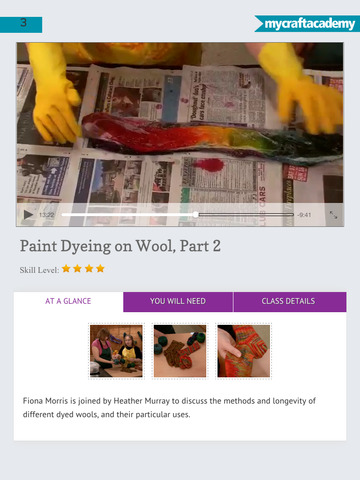 Paint Dyeing on Wool screenshot 10