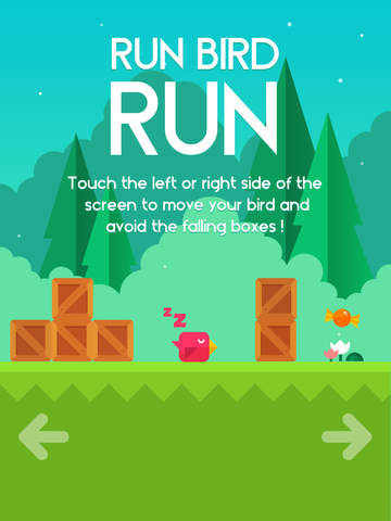 Run Bird Run screenshot 7
