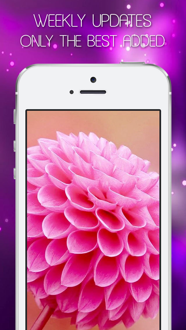 Colorful Girly Wallpapers & Pink Backgrounds HD - Live Pink Themes & Fairy Images for Girls screenshot 5