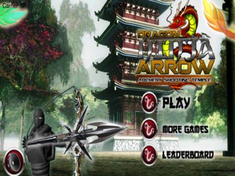Ninja Arrow Pro : Legend Of The Ancient Dragon The Temple Tour screenshot 5