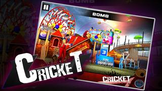 Cricket 3D : Street Challenge screenshot 1