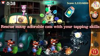 Cat Bottles screenshot 4