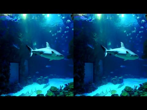 3D Side by Side screenshot 8