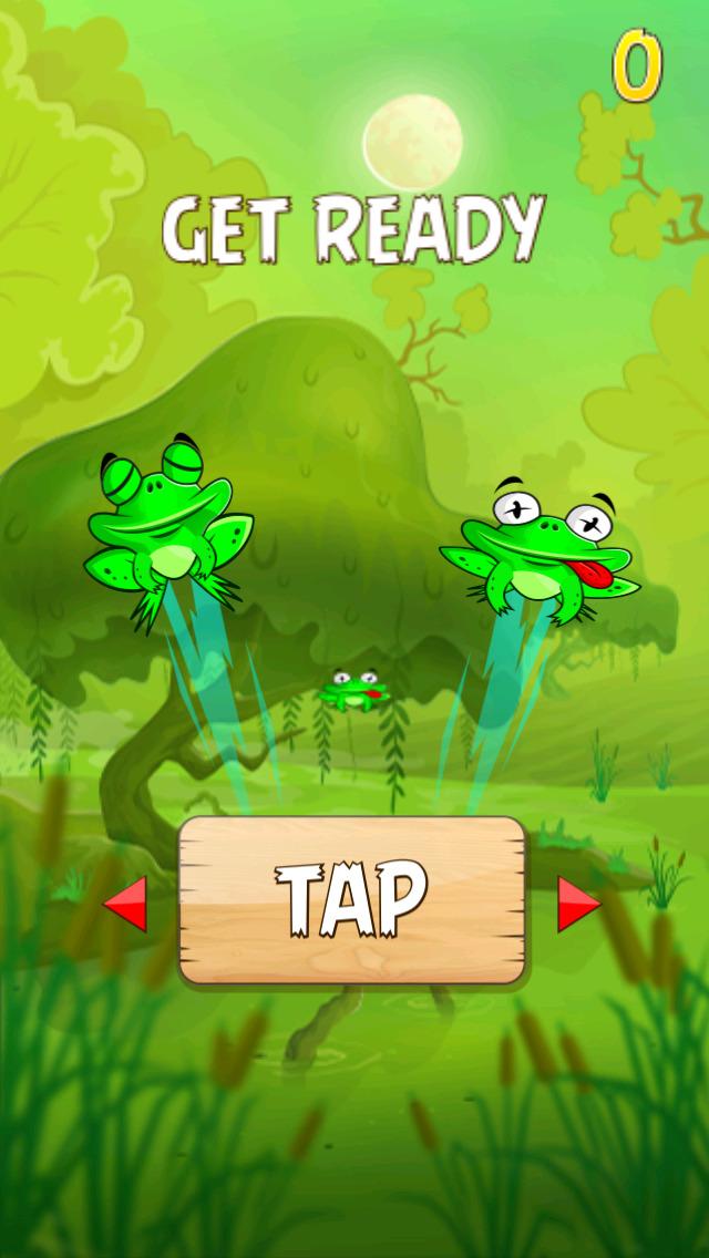 Keep Frog Alive screenshot 1