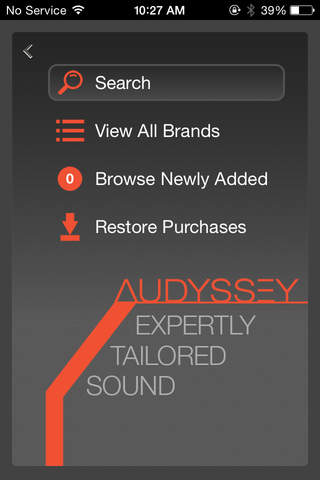 Audyssey Music Player - náhled