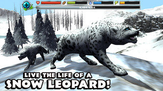 Snow Leopard Simulator screenshot 1