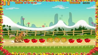 Pony Dash screenshot 3
