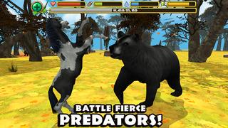 Wild Horse Simulator screenshot 4