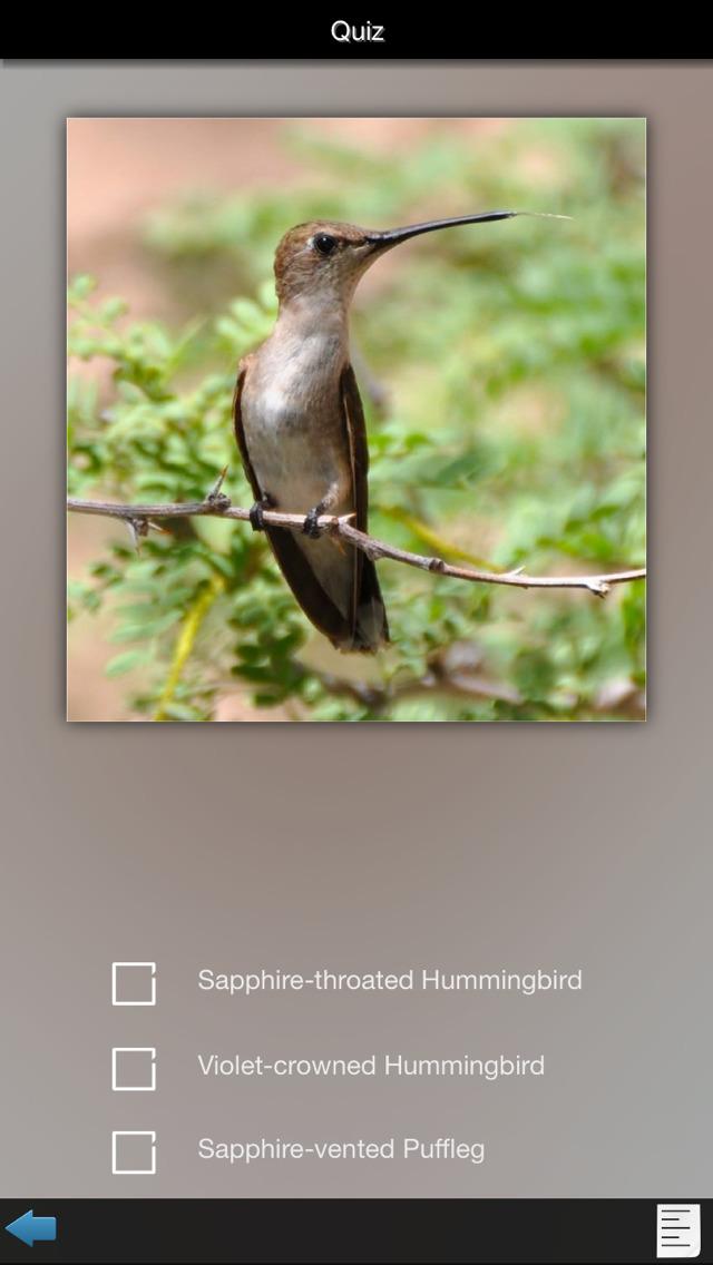 Hummingbirds Guide screenshot 4