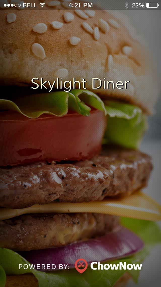 Skylight Diner screenshot 1