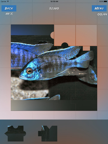 Puzzles Fishes screenshot 8