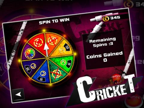 Cricket 3D : Street Challenge screenshot 10