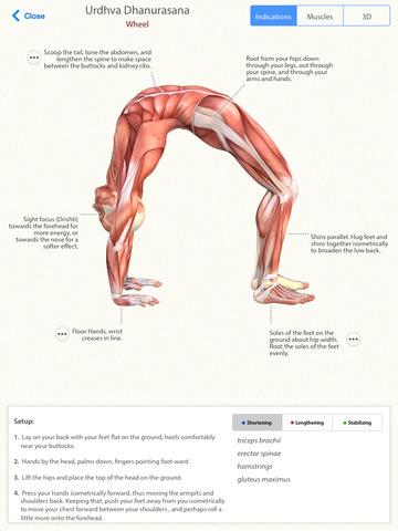 yoga anatomy pro  learn the anatomy behind the asanas of