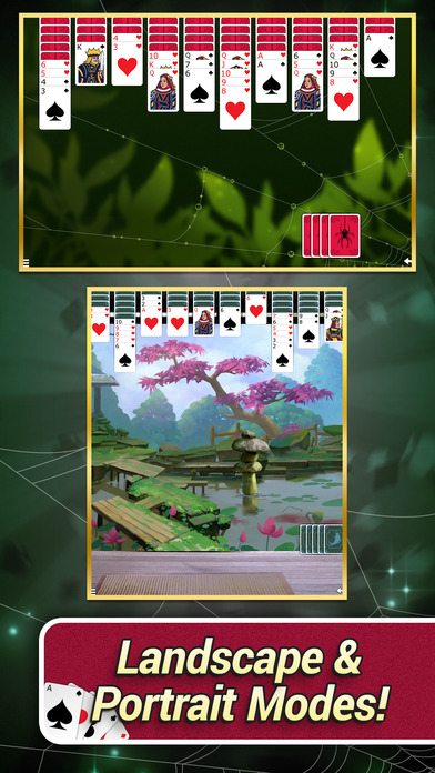 Spider Solitaire with Themes screenshot 3