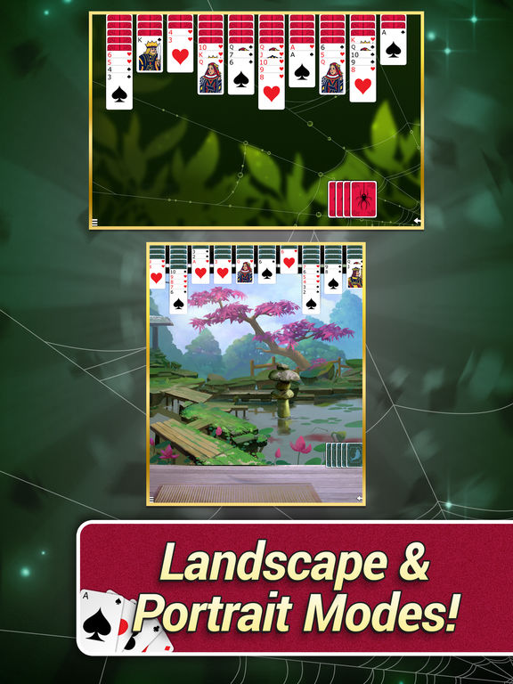 Spider Solitaire with Themes screenshot 8