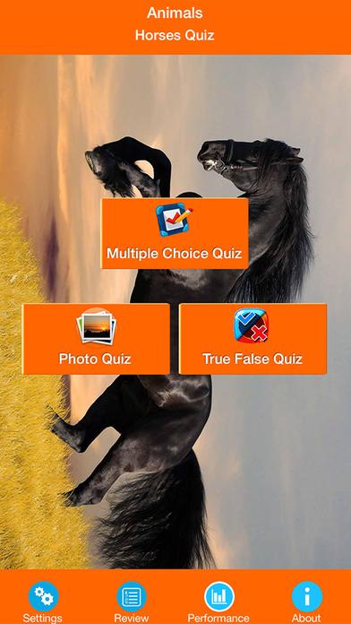 Horse Breeds Quizzes screenshot 1