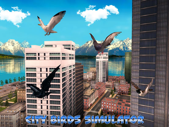City Birds Simulator Full screenshot 5