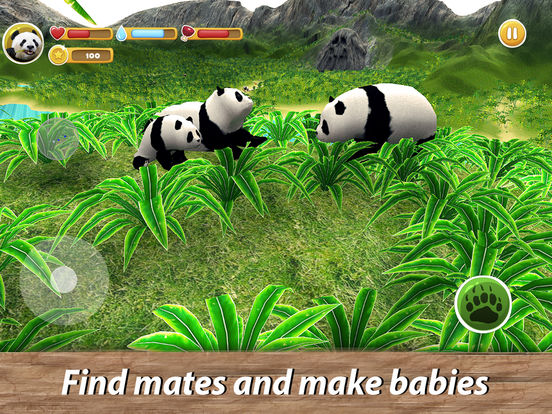 Panda Family Simulator Full screenshot 7