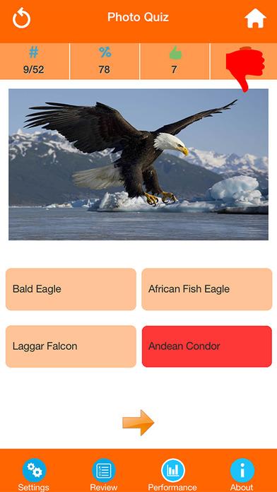 Animals : Wild Birds Quiz screenshot 3