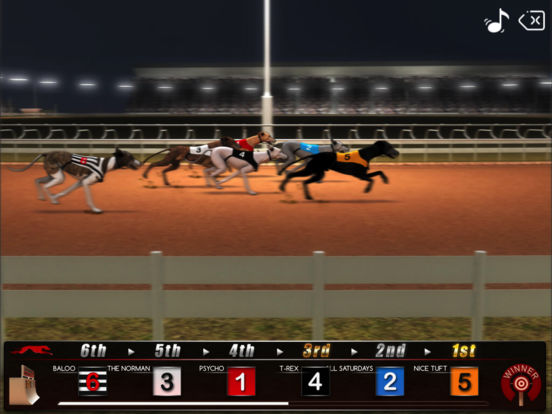 Greyhound Racing ® screenshot 6