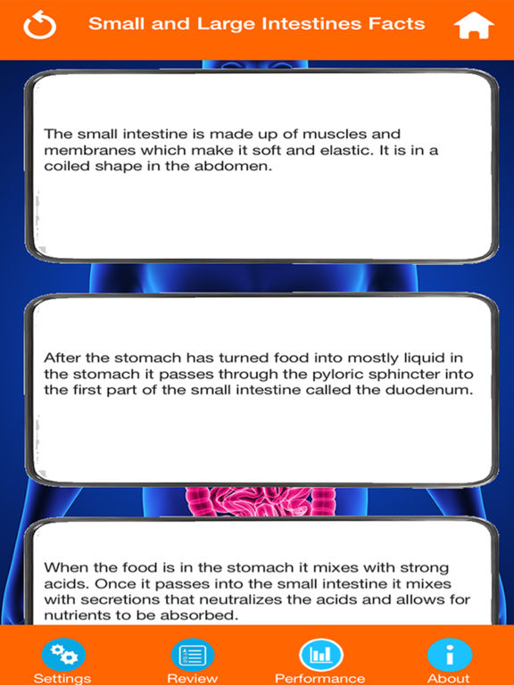 Body Parts : Small and Large Intestines Quiz screenshot 9