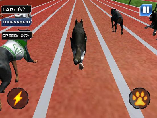 Super Dog Racing Champions screenshot 8